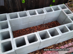 Cinderblock Raised Garden Bed